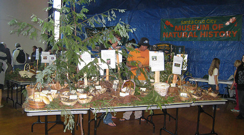 Exhibit table with various mushrooms at the Santa Cruz Fungi Fair