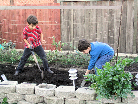 Kids love veggie gardening together!