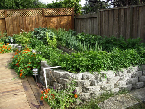 Former raised garden beds